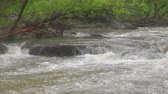 tumultuous : Stormy mountain river running over rocks