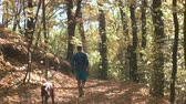 windy : Young adult running on the forest path with his dog during fall season
