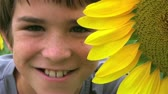 Close-up of cute young boy smiling beside vibrant yellow sunflower.  Stock Footage