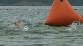 WAYNESVILLE - JULY 5: Swimmers (names withheld) from Ohio competing during the swim leg of the Caesar Creek Triathlon held at Caesar Creek State Park July 5, 2009 in Waynesville, OH. Stock Footage