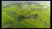 Aerial view agricultural area of thailand.