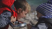 Two brothers play on the beach in warm clothes Vidéos Libres De Droits