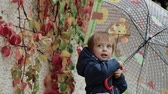 grimasa : Happy little boy stands under an umbrella during the rain on a background of autumn yellow leaves