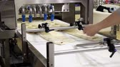 bakery : Automatic bakery production line Stock Footage