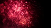 roket : Close up of firework pyrotechnic show