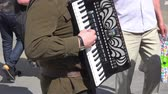 accordionist : Close up view of accordion player, russian folk music background Stock Footage