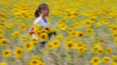 słonecznik : A young woman running along the meadow with a bunch of sunflowers and throwing them