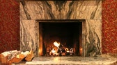 decor : Fireplace in room of house