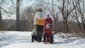 passeio : Two teams – of parents and of kids - taking a joky sledge race Stock Footage