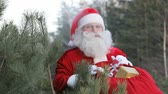 weihnachten : Santa waves at camera holding his sack of presents