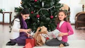 празднование : Girls unwrapping Christmas gifts