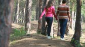 carinho : Lovely couple holding hands strolling away in the woods Stock Footage