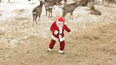 weihnachten : Cool Santa Claus dancing on a deer farm
