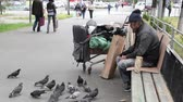 cart : Bearded homeless man feeding pigeons in the street