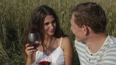 ocasião : Couple celebrating their anniversary in the countryside drinking wine Vídeos