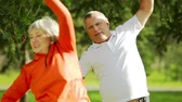 desportivo : Energetic elderly people exercising in the park together Stock Footage