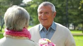 querido : Charming senior couple dating outdoors in the summer park Stock Footage