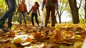 игривый : Guys playing football on fallen leaves while their girlfriends enjoying the walk Стоковые видеозаписи