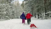 positivo : Rearview of active kids running in the winter woods with sleds