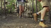excursão : Tilt down of four hikers in the woods approaching camera in slow motion