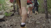 quatro pessoas : Low angle by camera following group of hikers making their way through the woods in slow-mo Stock Footage