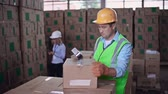 pegajoso : Close up of worker packing merchandise while female auditor taking inventory Stock Footage