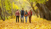 quatro : Four friends approaching camera walking in the woods in autumn and jumping in the air all at once just for fun
