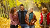 novembro : Four friends enjoying their autumn walk in the woods