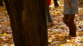 novembro : Low section of two boys kicking the ball about while their walk in the woods
