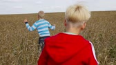 не : Camera following group of kids running in the wheat playing tag game Стоковые видеозаписи
