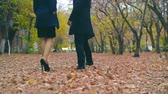 setembro : Camera following colleagues walking leisurely in park Stock Footage