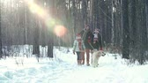 três : Tilt down the winter forest with family of three walking the dog