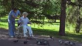 здоровье : Handicapped woman and her doctor feeding pigeons in park