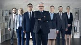 compromisso : Dolly in of v-formed business team of seven standing and looking straight at camera