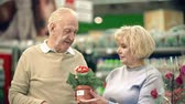 женат : Tilt down the couple of elderly customers choosing indoor plant in the shopping mall