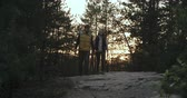 de mãos dadas : Couple with backpacks approaching camera walking in the woods at sunset Stock Footage
