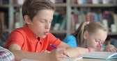 classmates : Elementary student finishing task in class, his mate asking for hint Stock Footage