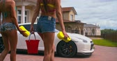 sedutor : Rear view of two hot girls squeezing foamy sponges out before washing a sports car