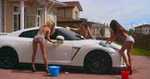 sedutor : Three sexy girls in bikini and mini denim shorts washing a luxury car with foam sponges Stock Footage