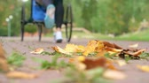 mama : Close-up of gold autumn leaves stirred up by a woman running with a baby jogger Wideo