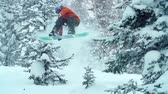 melão : Freerider performing a melon grab while snowboarding in tree area