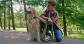 подросток : Teenage boy petting his lovely golden retriever and taking it for a walk