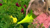 ajuda : Nice little girl watering flowers in garden with a help of her mother Stock Footage