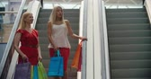 escada rolante : Mature woman and her adult daughter going down the escalator in shopping mall and talking Stock Footage