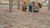 exploring : Dolly shot of loving parents showing his baby son a cedar cone with nuts in autumn park