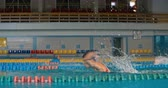 nadador : Two professional swimmers racing in swimming pool Stock Footage