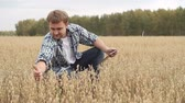 organic : Farmer looking at his field of rye and using his digital tablet Stock Footage
