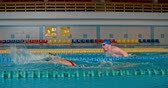 borboleta : Professional sportswoman and sportsman swimming butterfly stroke in the pool