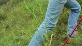 bota : Close up of legs of tourist going up the slope with trekking poles through green grass Stock Footage
