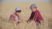 talos : Farmer and his son sitting in the field of rye and looking at their grain crop